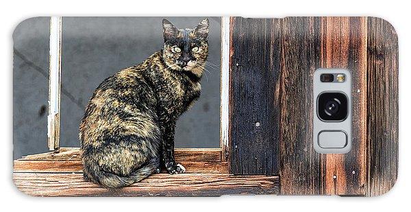 Cat In A Window Galaxy Case