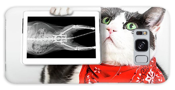 Cat With X Ray Plate Galaxy Case