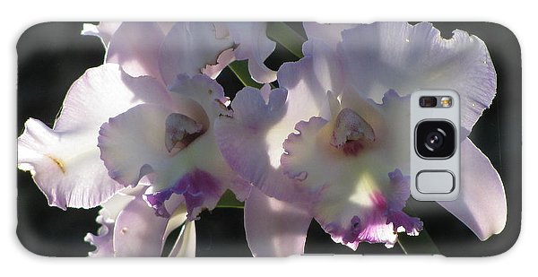 Cattleya Orchid Galaxy Case