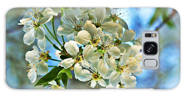 Cherry Tree Flowers Galaxy Case