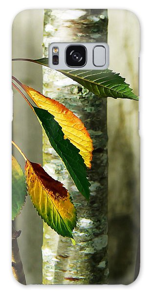 Cherry Tree Galaxy Case