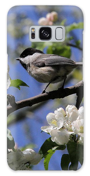 Chickadee Among The Blossoms Galaxy Case