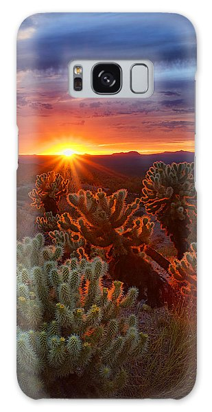 Cholla Sunset  Galaxy Case