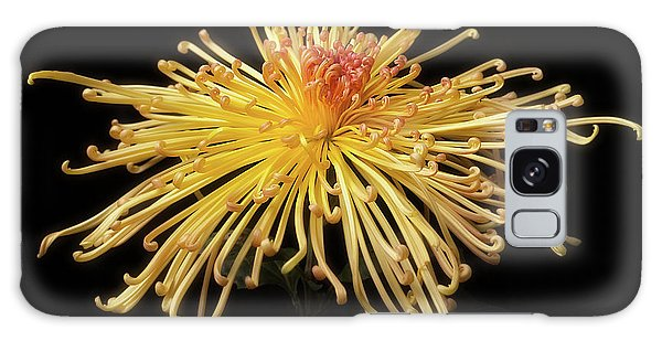 Chrysanthemum 'lava' Galaxy Case