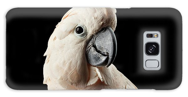 Closeup Head Of Beautiful Moluccan Cockatoo, Pink Salmon-crested Parrot Isolated On Black Background Galaxy Case
