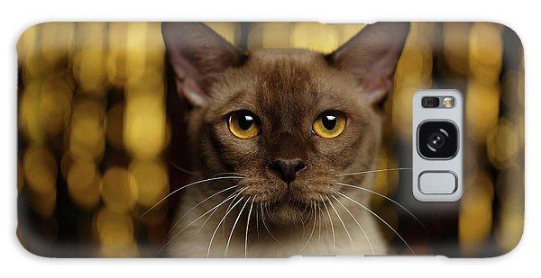 Closeup Portrait Burmese Cat On Happy New Year Background Galaxy Case