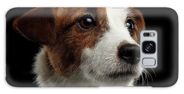 Closeup Portrait Of Jack Russell Terrier Dog On Black Galaxy Case