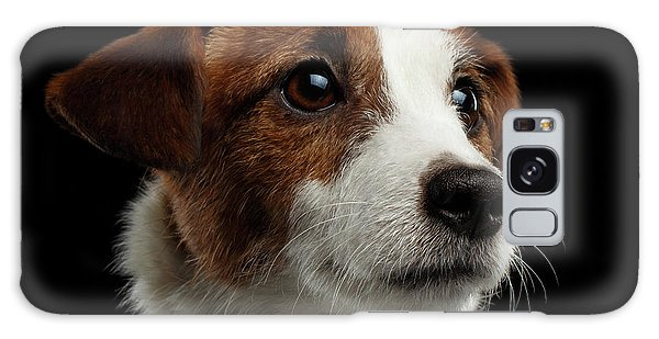 Closeup Portrait Of Jack Russell Terrier Dog On Black Galaxy Case by Sergey Taran