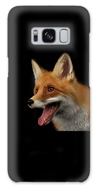 Closeup Portrait Of Smiled Red Fox Isolated On Black  Galaxy Case