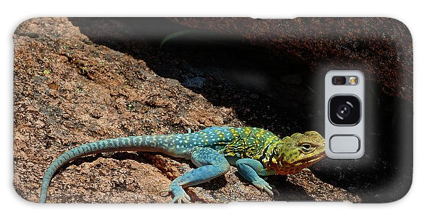Colorful Lizard II Galaxy Case