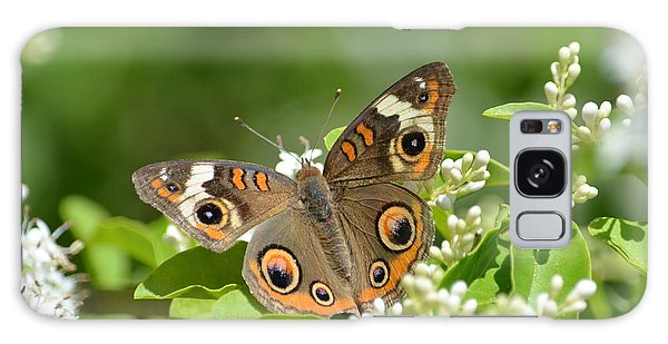 Common Buckeye Galaxy Case by Kathy Gibbons