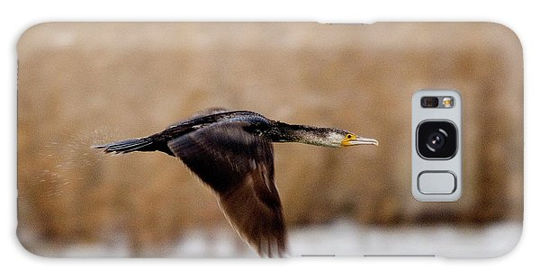 Cormorant In Flight Galaxy Case