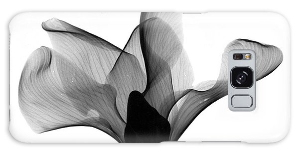 Cyclamen Flower X-ray Galaxy Case