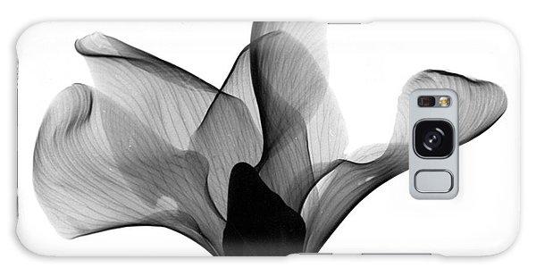 Cyclamen Flower X-ray Galaxy Case