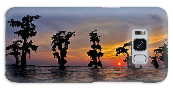 Cypress Trees Galaxy Case