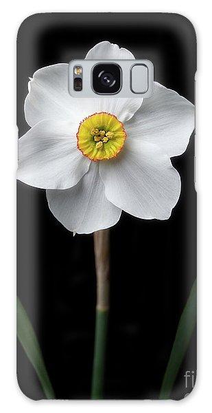 Daffodil 'cantabile' Galaxy Case