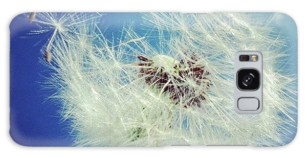 Beautiful Galaxy Case - Dandelion And Blue Sky by Matthias Hauser