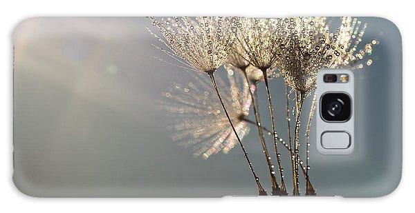 Dandelion Plumes Galaxy Case