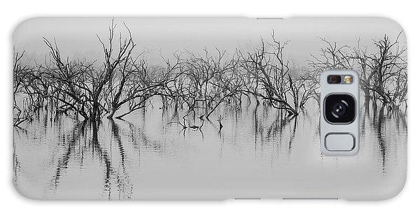 Dead Lake Reflections Galaxy Case