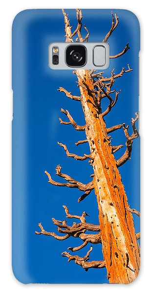 Dead Tree Galaxy Case by Celso Diniz