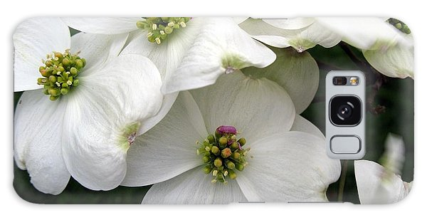 Dogwood Branch Galaxy Case by Carol Sweetwood