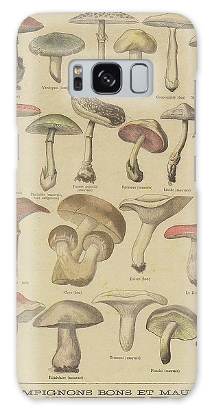 Edible And Poisonous Mushrooms Galaxy Case by French School
