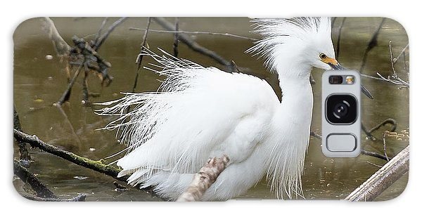 Egret Bath Galaxy Case
