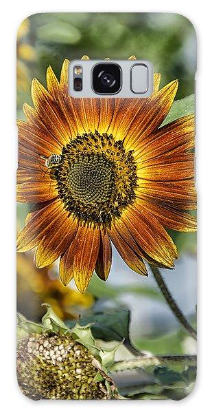 End Of Sunflower Season Galaxy Case