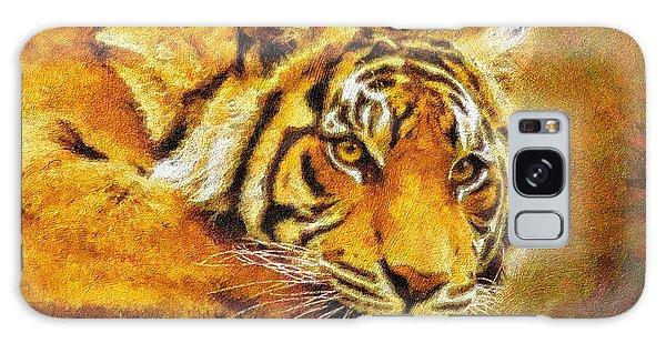 Eye Of The Tiger Galaxy Case