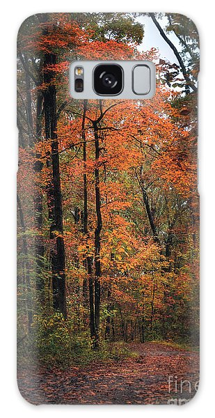 Fall In Arkansas Galaxy Case