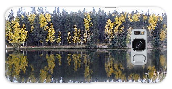 Potty Pond Reflection - Fall Colors Divide Co Galaxy Case