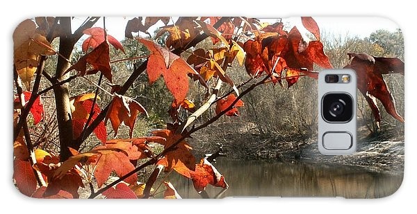 Fall On The Withlacoochee River Galaxy Case