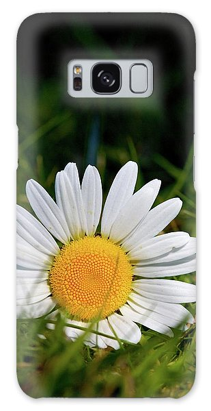 Fallen Daisy Galaxy Case