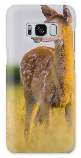 Galaxy Case featuring the photograph Fawn In Sunlight by John De Bord