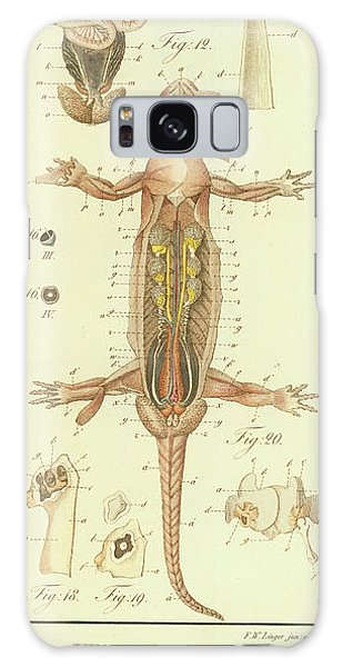 Fire Salamander Anatomy Galaxy Case