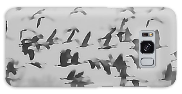Flight Of The Sandhill Cranes Galaxy Case