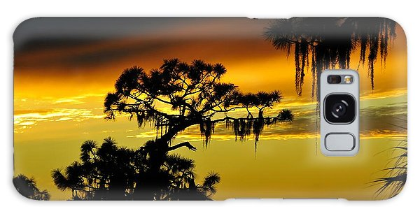 Weathered Galaxy Case - Central Florida Sunset by David Lee Thompson