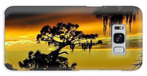 Central Florida Sunset Galaxy Case by David Lee Thompson