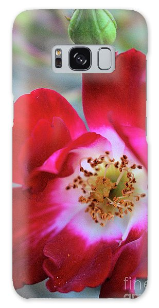 Flower Dance Galaxy Case