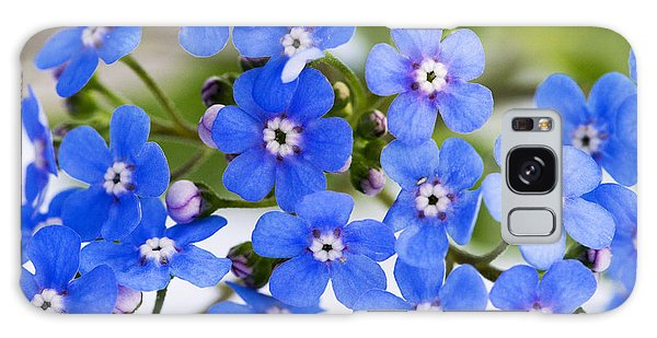 Forget-me-not Galaxy Case by Chevy Fleet