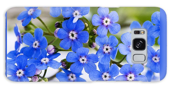 Forget-me-not Galaxy Case