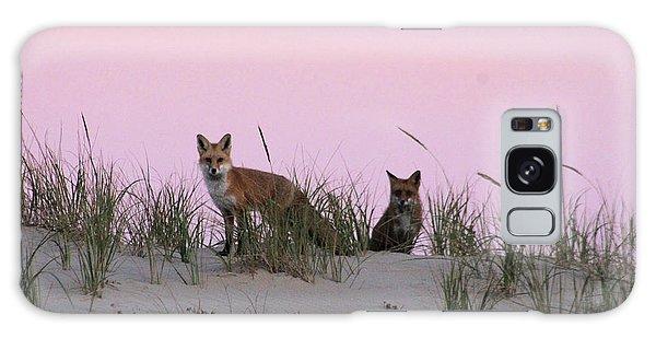 Fox And Vixen Galaxy Case