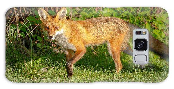 Fox Portrait  Galaxy Case by Brian Caldwell