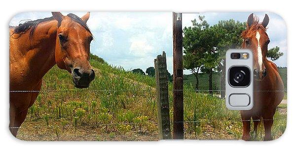 Friendly Stallions Galaxy Case