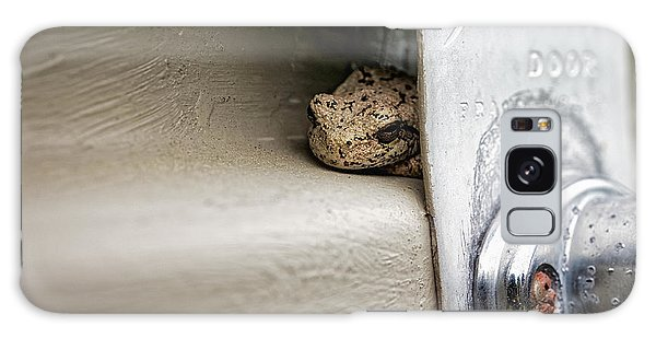 Galaxy Case featuring the photograph Garage Door Tree Frog by Lars Lentz