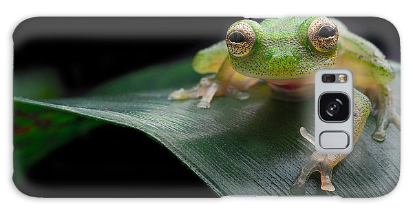glass frog Amazon forest Galaxy Case