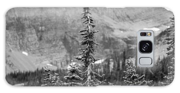 Gnarled Pines Galaxy Case