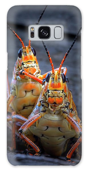 Grasshoppers In Love Galaxy Case by Mark Andrew Thomas