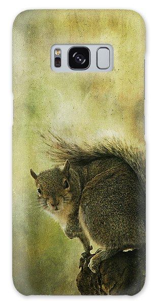 Gray Squirrel Galaxy Case