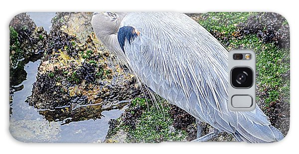 Galaxy Case featuring the photograph Great Blue Heron by AJ Schibig